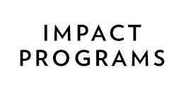 Impact programs 260x130