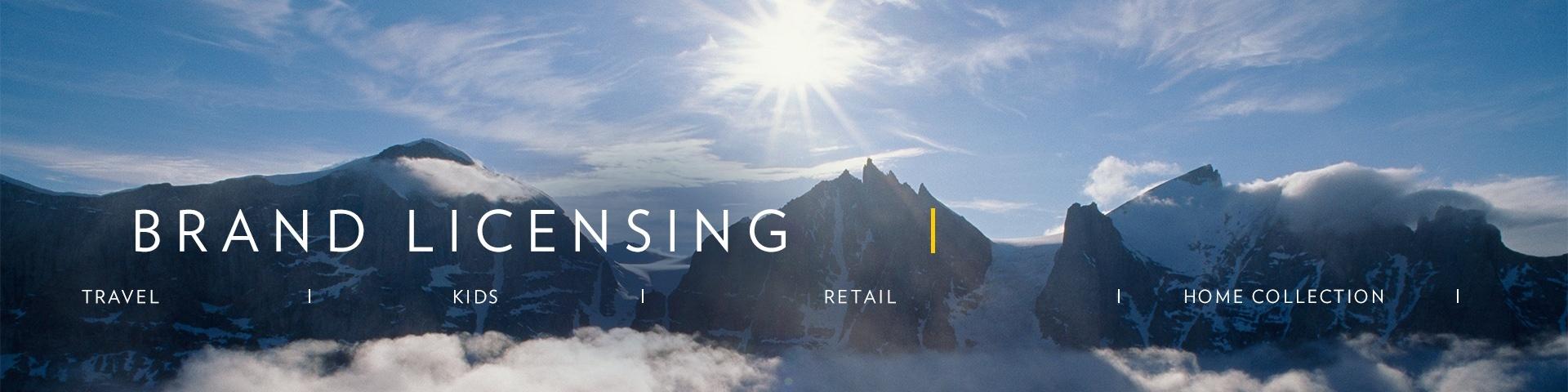 10. Brand Licensing