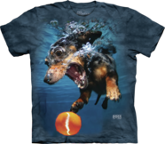 Underwater Dogs & Pounce