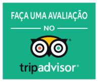 Portugués (Brasil)