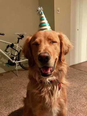 It was the best birthday!!! Thanks Eric, Kaiti, Nick, Ashley, Josh, and Jami for celebrating with me and to everyone who sent their love via text and Facebook!!! Here's a token Charlie pic to celebrate!.jpg - LauraHamelTest file