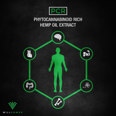 ReGenPCR-PCR-GFX.jpg - WillPower Products file