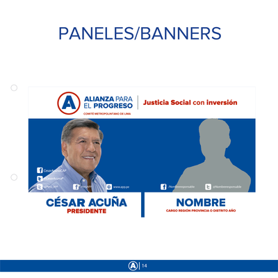 Panel doble.png - Alianza Para el Progreso file