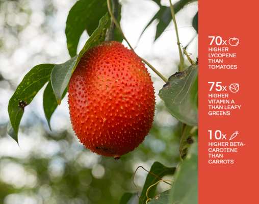 Gac fruit Nurition vs other fruits.png - GacLife file
