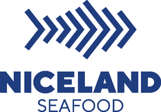 Niceland Seafood / Merch Visual Assets