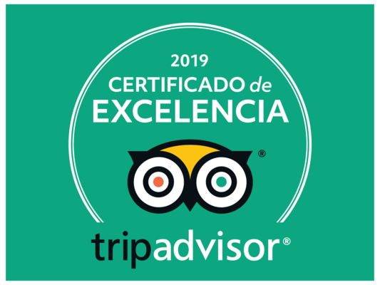 es-ES-AR-LX@2x - 2019 Certificate of Excellence file