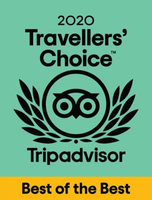 TC 2020 BOTB LL GREEN BG CMYK - Tripadvisor - Travelers' Choice Best of the Best 2020 file