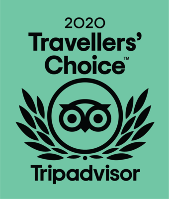 TC_2020_LL_GREEN_BG_CMYK - Tripadvisor - Travelers' Choice 2020 file